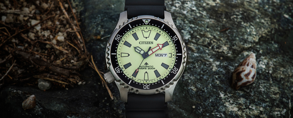 CITIZEN Asia Limited Promaster NY011 series